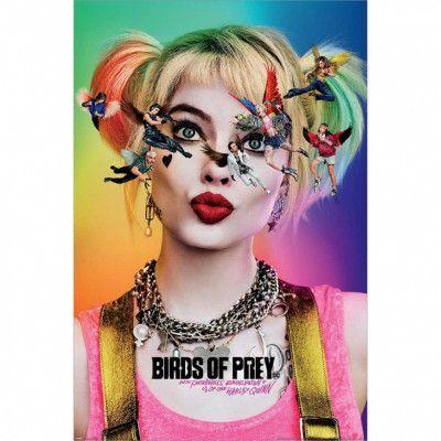 Birds Of Prey, Maxi Poster - Seeing Stars