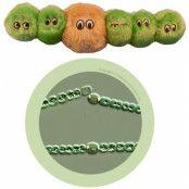 Giant Microbes Alger