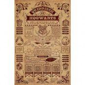 Harry Potter Poster Quidditch