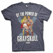 By The Power Of Grayskull T-Shirt, Basic Tee