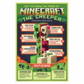 Minecraft, Maxi Poster - Creepy Behaviour