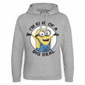 Minions - I'm Kind Of A Big Deal Epic Hoodie, Epic Hooded Pullover