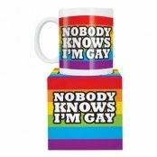 No body Knows I'm Gay Mugg