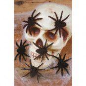 Hårigaspindlar 6/ark