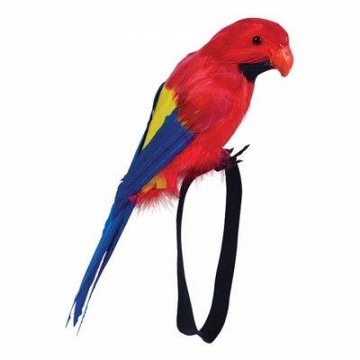Papegoja med handledsband