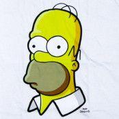 Homer Simpsons Head