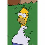 The Simpsons, Maxi Poster - Homer