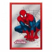 Spegeltavla Spiderman