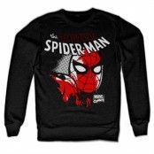 Spider-Man Close Up Sweatshirt, Sweatshirt