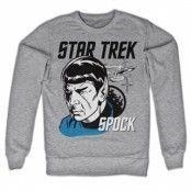Star Trek & Spock Sweatshirt, Sweatshirt