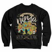 TMNT - Bros On The Road Sweatshirt, Sweatshirt