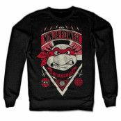 TMNT Ninja Power Sweatshirt, Sweatshirt
