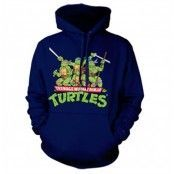 Turtles Distressed Group Hoodie, Hooded Pullover