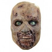 The walking dead - Rotten walker